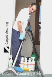 Steam Carpet Cleaning Company Berwick 3806