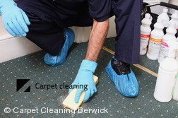 Carpet Cleaning Berwick 3806
