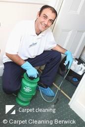 Berwick 3806 Carpet Cleaners