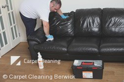 Berwick 3806 Leather Cleaning
