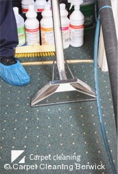 Professional Deep Carpet Cleaning in Berwick