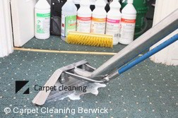 Berwick 3806 Steam Carpet Cleaning Services